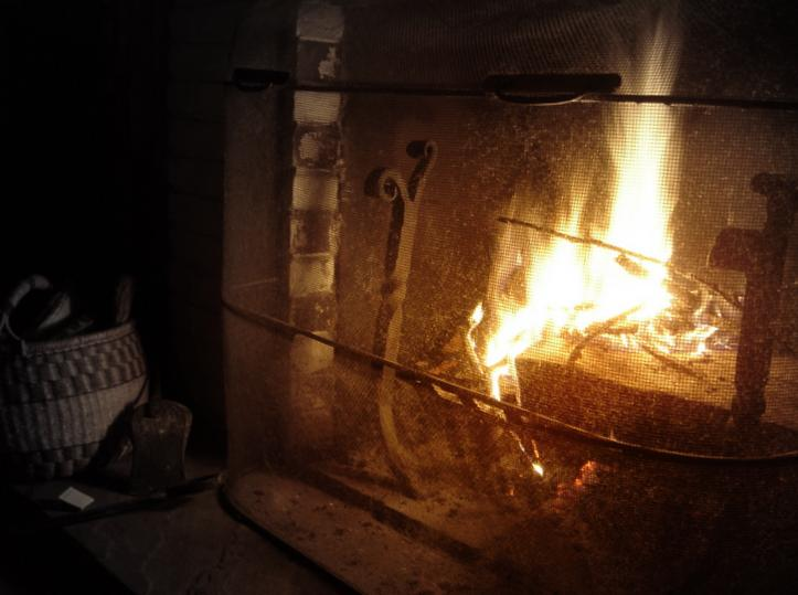 Thanksgiving fire