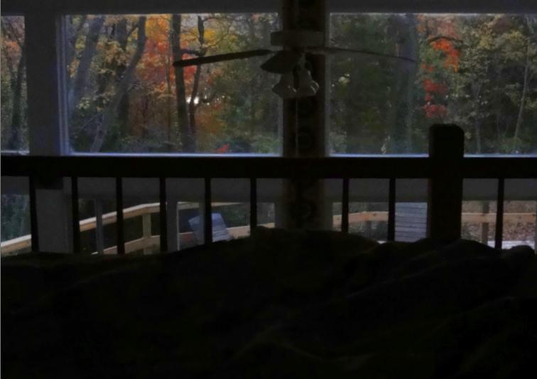 Autumn from the sleeping loft