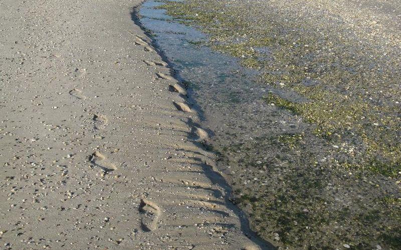 Beach seam