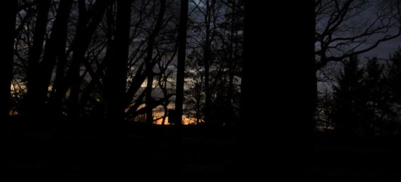 An almost december sunrise