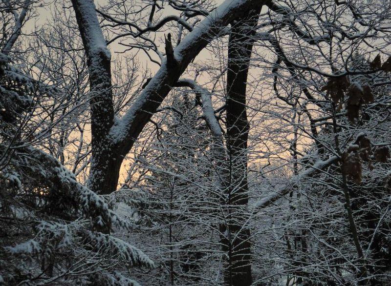 Second snow