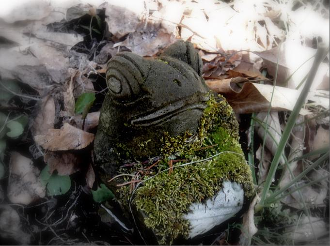 Moss covered music