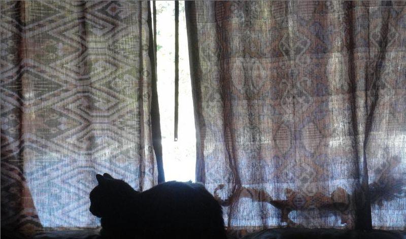 Was a shadow on cloth