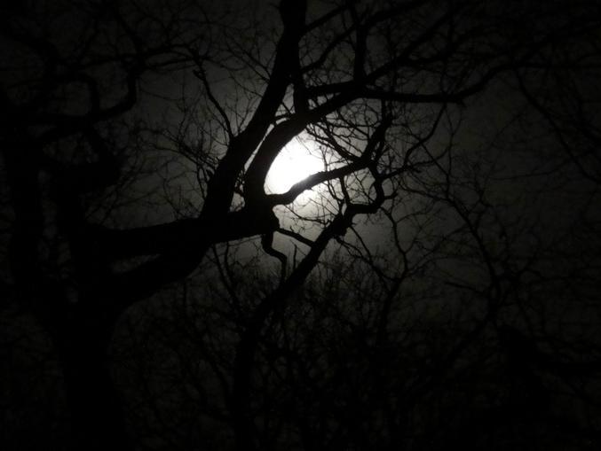 Shapeless moon