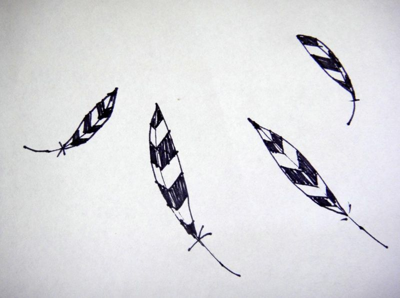 Sample feathers