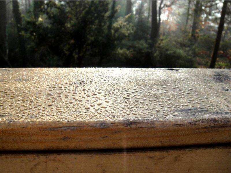 Dew drops on the deck rail
