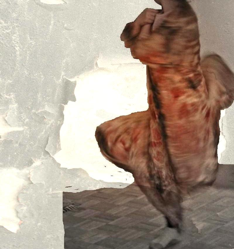 this photo digitally altered from an origianl photo courtesy of wendy golden levitt, cloth dyed by india flint