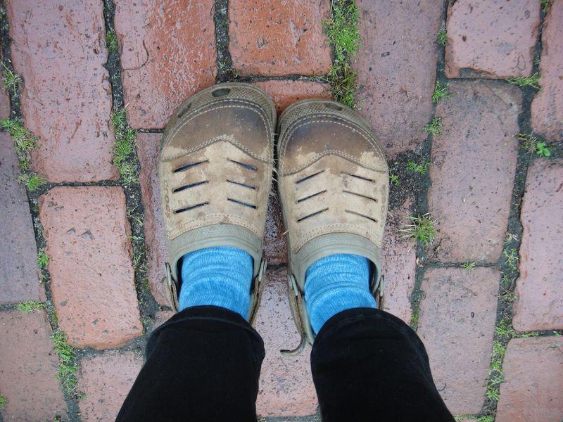 Indigo socks