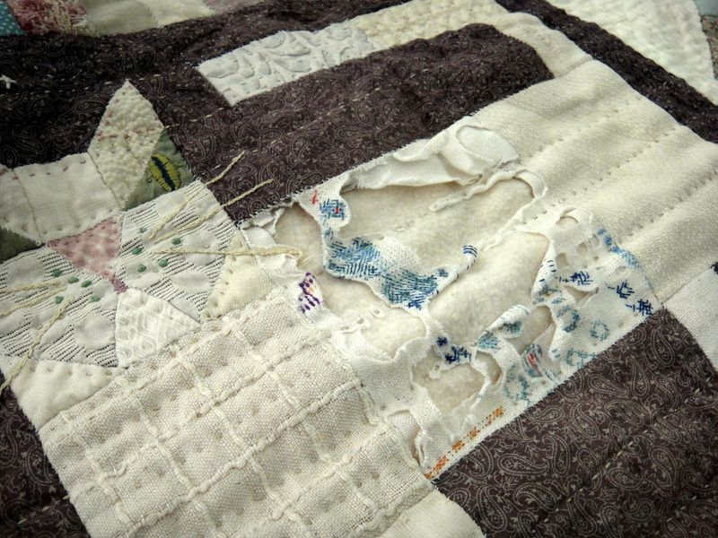 The old cat quilt
