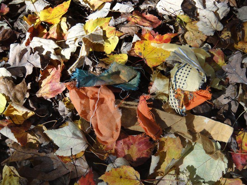 Scraps of season