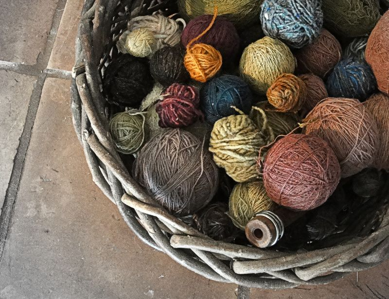A weaver's nest