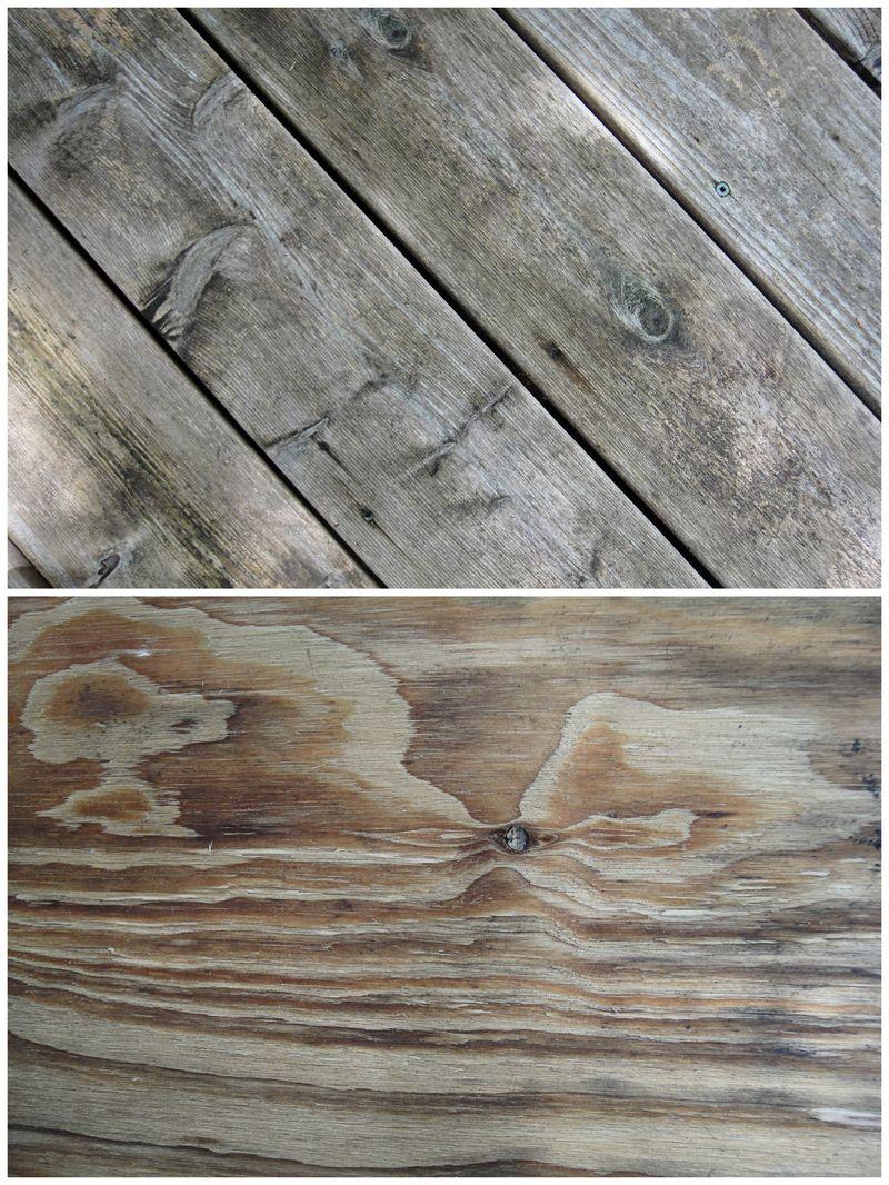 Wet wood