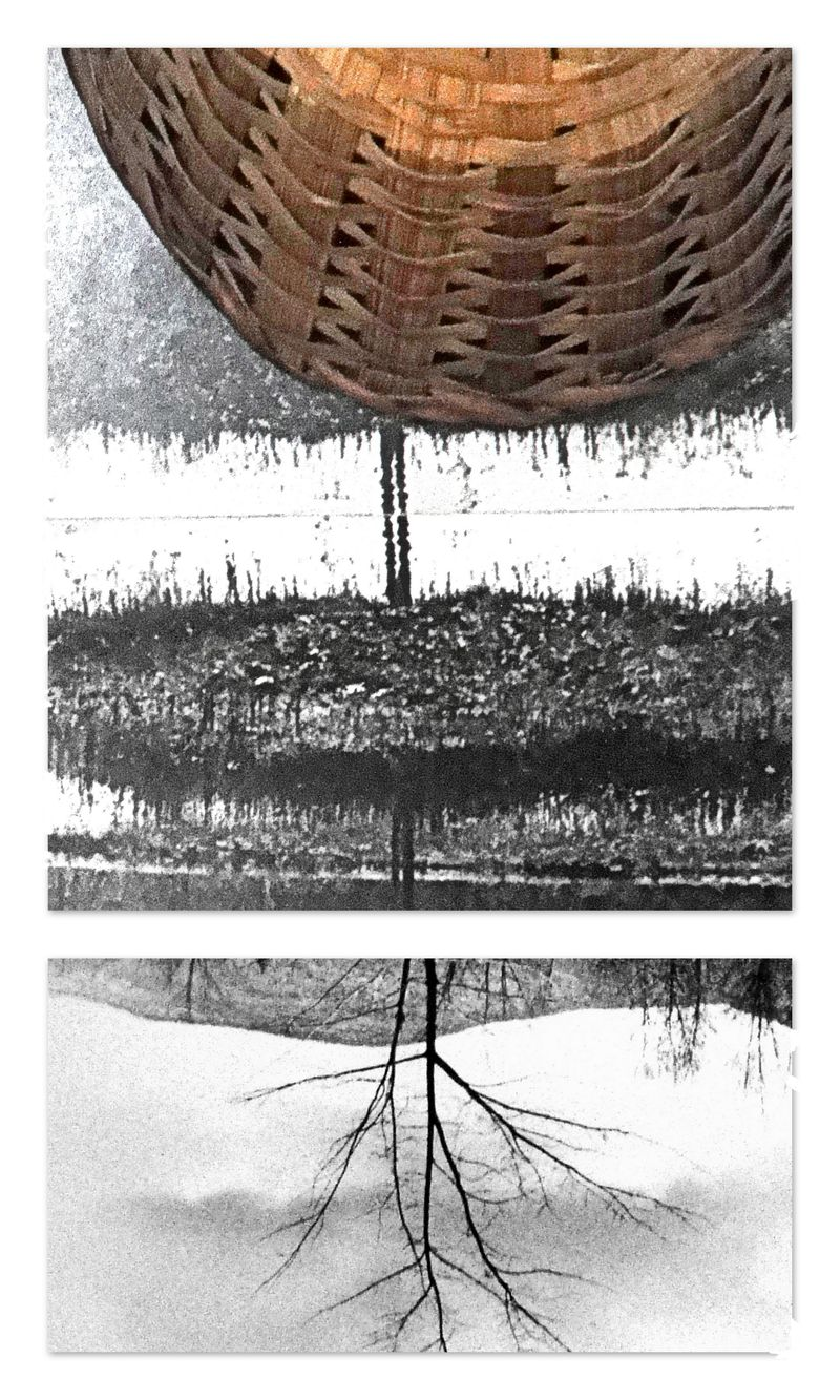 Composition with basket and  photo