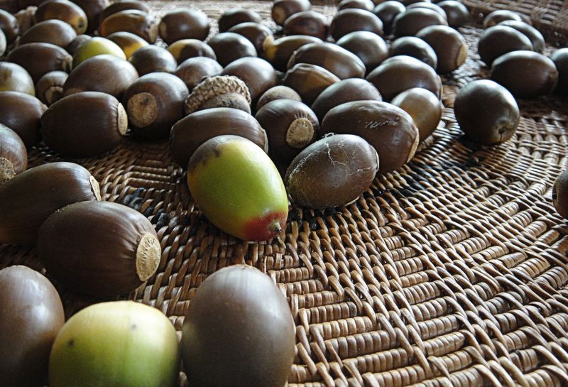 October fruits