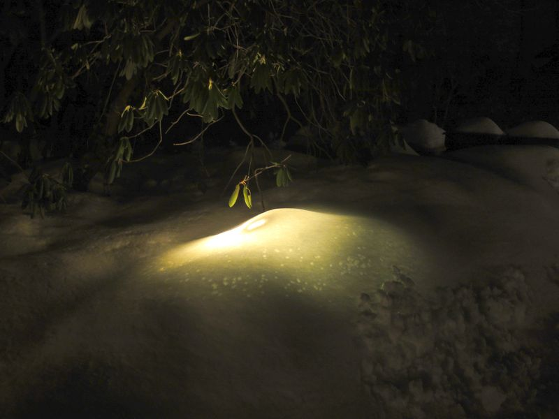 Light under snow