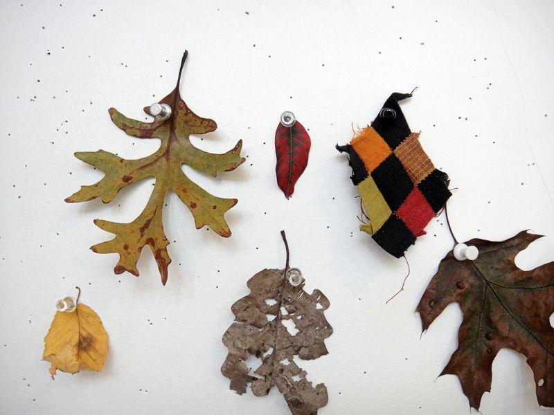 Cloth as leaf