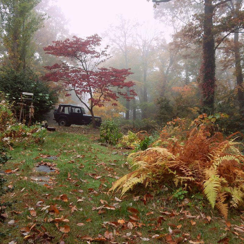Jeep in november