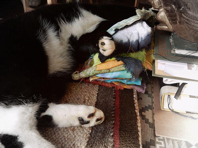 Sleeping with cloth