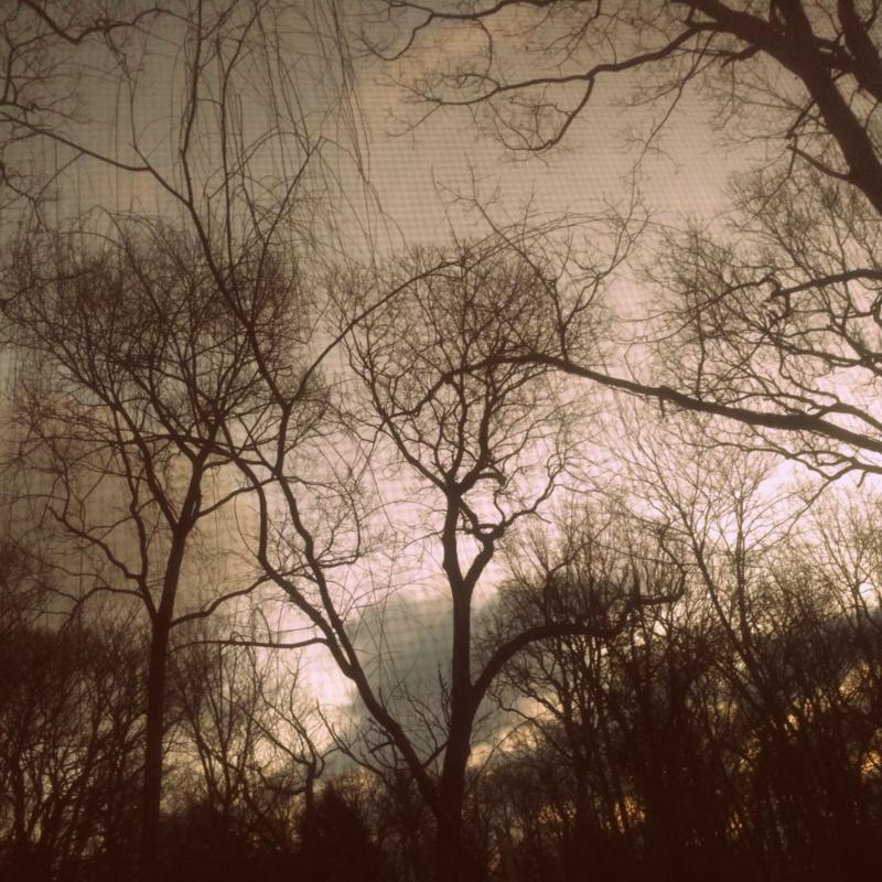 A midwinter morning sky