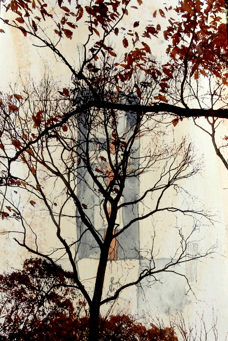 Cloth drawing through tree