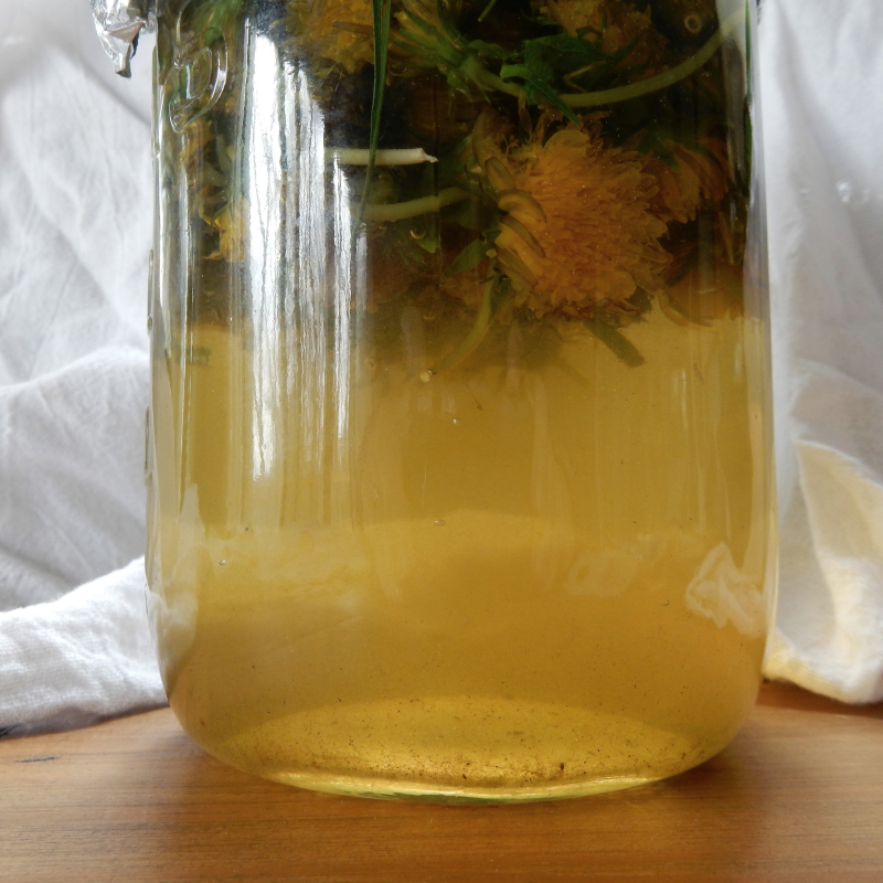 Dandelion brew