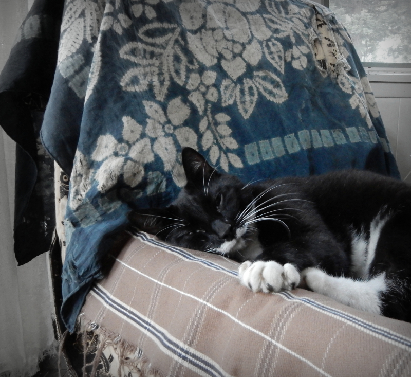 Sleepy soul-o