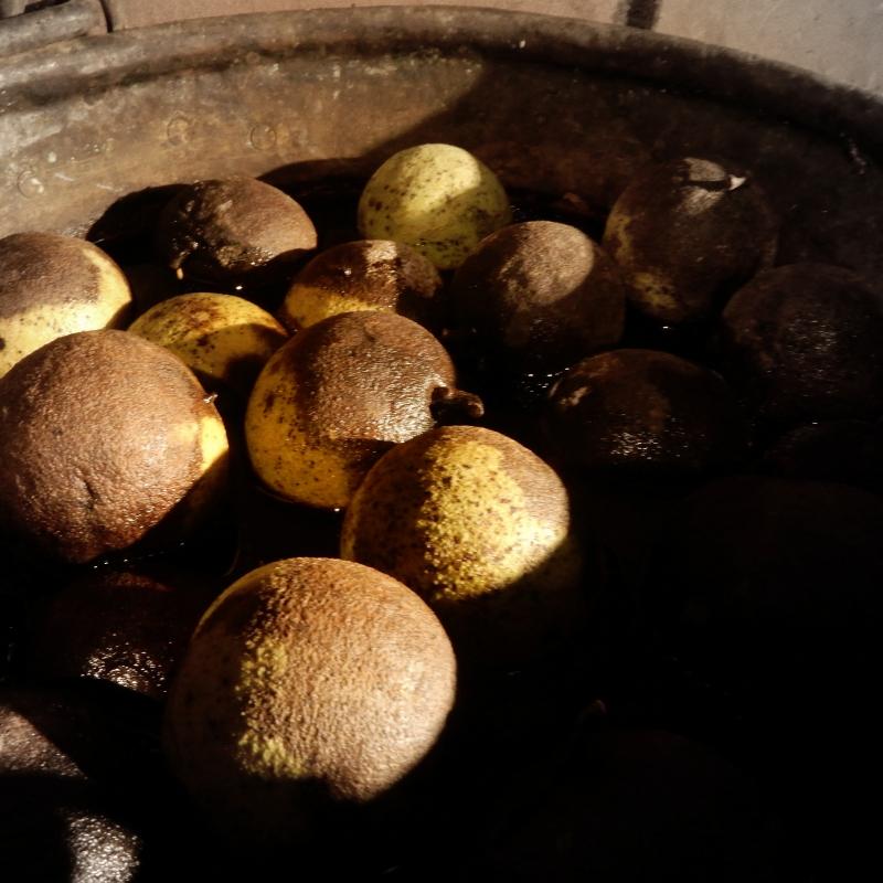 Black walnut dye prep