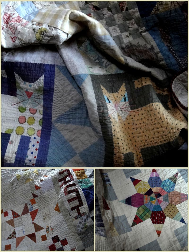 Cat quilt in use