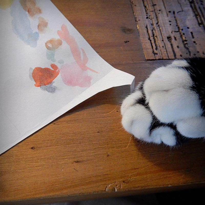 Paws and paint