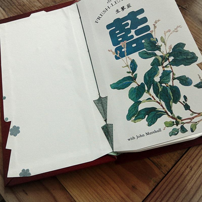 Fresh leaf indigo by John Marshall