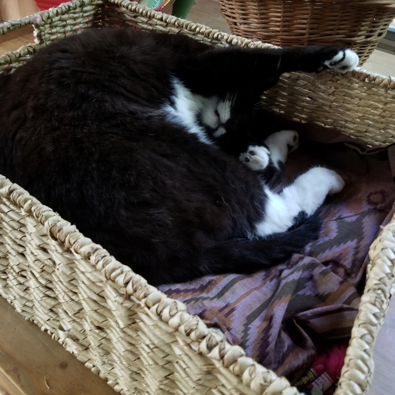A bigger basket