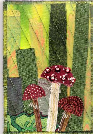Mushrooms_by_kristin_4